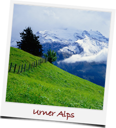 Umer Alps in Switzerland